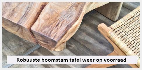 robuuste boomstam tafel leuk voor in de woonkamer of in de tuin